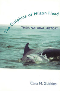 dolphins-of-hilton-head